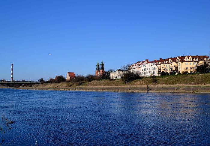 UM Poznań: Pływające ogrody